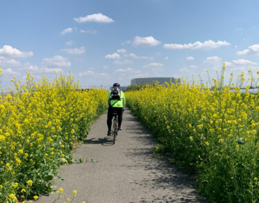 Cycling Club Nagomiへようこそ!